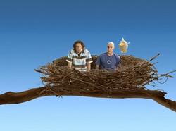 Bird Room