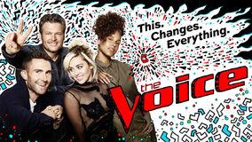 Voice11