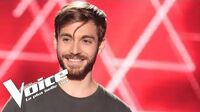 Lou Reed - Walk on the wild side Petit Green The Voice France 2018 Blind Audition