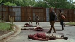 Normal The Walking Dead S06E02 1080p 2353