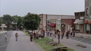 Normal twd309-001694