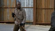 Normal twd0602-1892