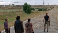 Normal twd0505-2619