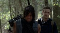 Normal twd0513-1202