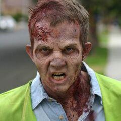 The Walking Dead: Torn Apart | The Walking Dead Wiki ...