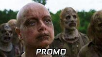"""The Walking Dead 9x11 """"Bounty"""" Promo Subtitulada"""
