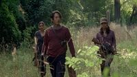 Normal twd0507-1120