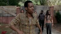 Normal twd0509-0703