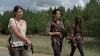 Normal twd0511-0904