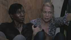 Normal twd102-002264