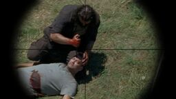 Normal twd0602-1619