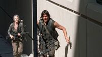 Normal twd0506-1324