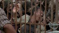Normal The Walking Dead S06E03 1080p 2125