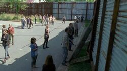 Normal The Walking Dead S06E05 1080p 0253