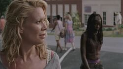 Normal twd303-001722