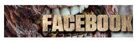 BannerFacebook2015
