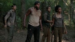 Tyreese Gruppe
