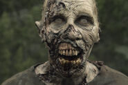 501 Zombie 4