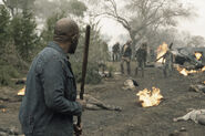 501 Morgan Zombies