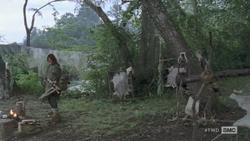 Daryls Camp