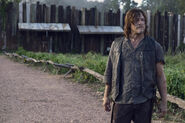 Daryl 911