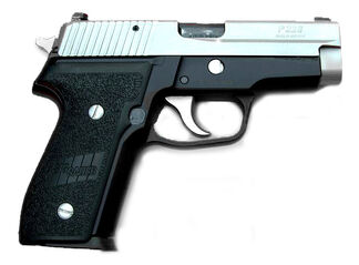 Two Tone Sig Sauer P228