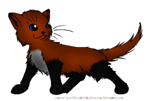 Redstar.leader