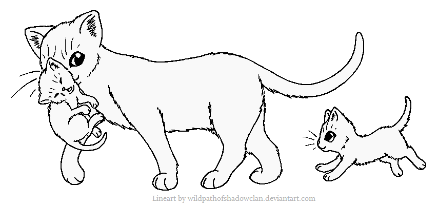 Image Kit Carrying Lineart By Wildpathofshadowclan D4oobun Png Warrior Cat Coloring Pages