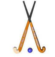 Feild hockey stick ball