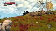 The Witcher 3- Wild Hunt - MATANDO UM ARQUIGRIFO SEM PERDER SANGUE!