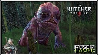 The Witcher 3 - Cuidando Do Fetulho