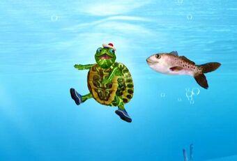Save The Turtle Wonder Pets Wiki Fandom