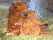 Beaverwonderpets