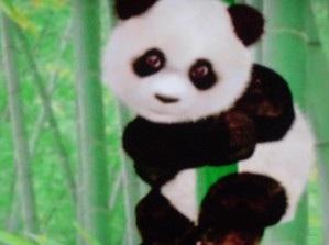 File:Pandababy.jpg