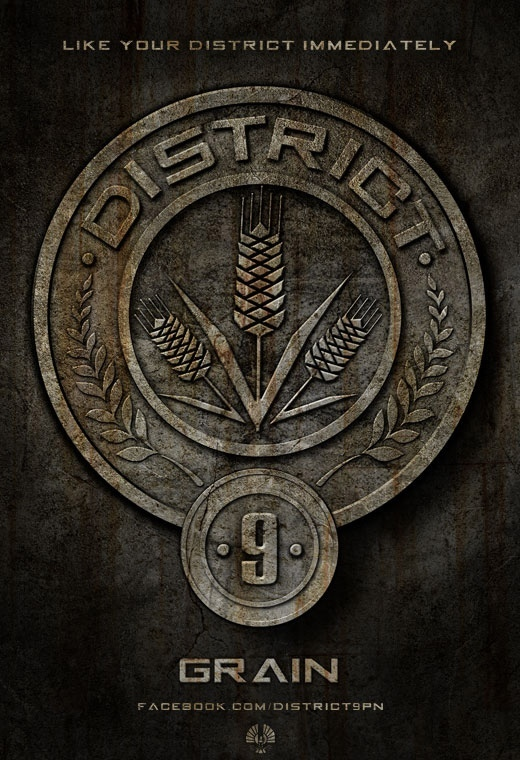 District09