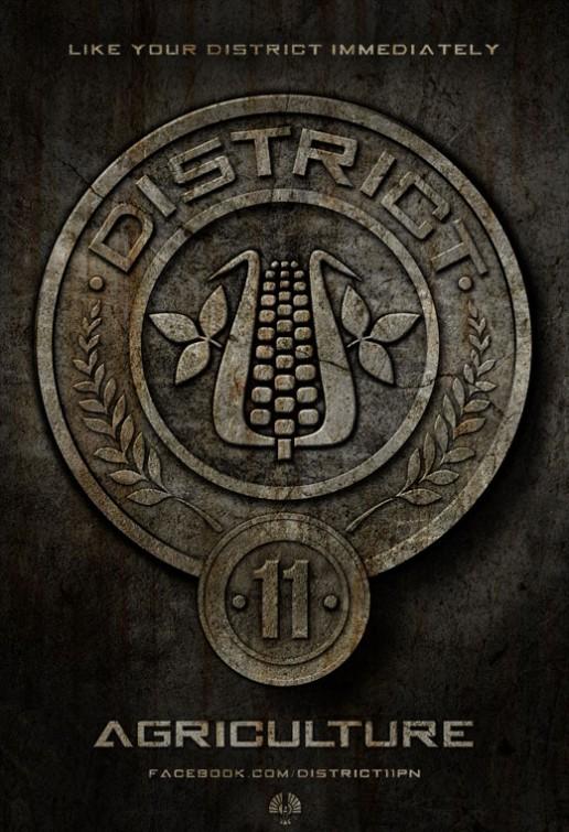 District11