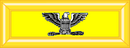 Colonel (US Cavalry)