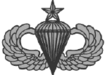 Senior Parachutist Badge