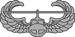 Image result for air assault wings no background