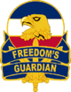 US Army Forces Command DUI