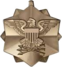 Joint Service Achievement Medal (medal only)