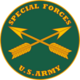 U.S. Army Special Forces (USASFC), branch plaque