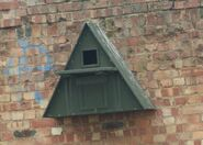 Barn Owl Nest Box