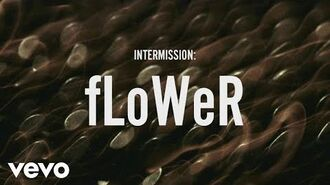 ZAYN - INTERMISSION- fLoWer (Lyric Video)