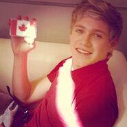 Niall Canada