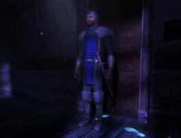 Sword Guard