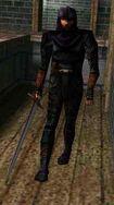 Thief swordsman
