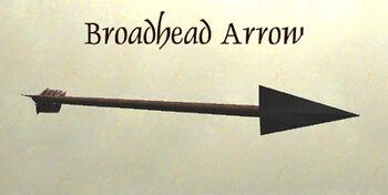 BroadheadArrow