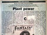 10 September 1981