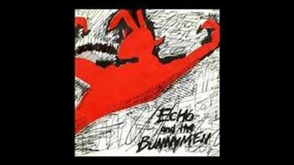 Echo and the bunnymen-The Pictures On My Wall